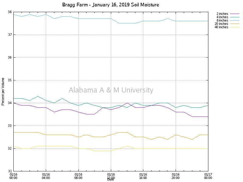 Bragg Farm: Soil Moisture January 16, 2019