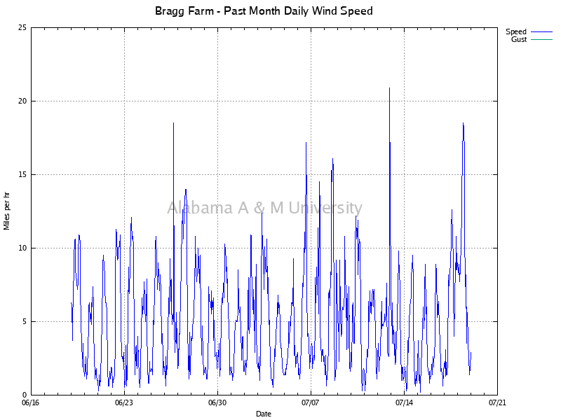 Bragg Farm: Daily Wind Speed Past Month