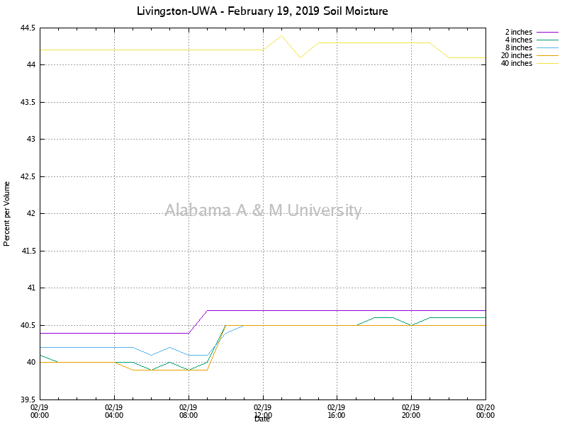 Livingston-UWA: Soil Moisture February 19, 2019