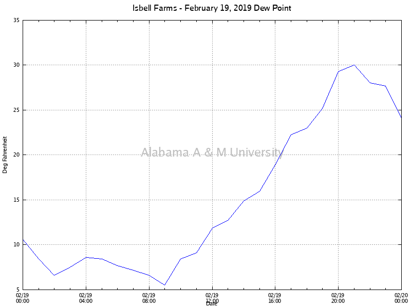 Isbell Farms: Dew Point February 19, 2019