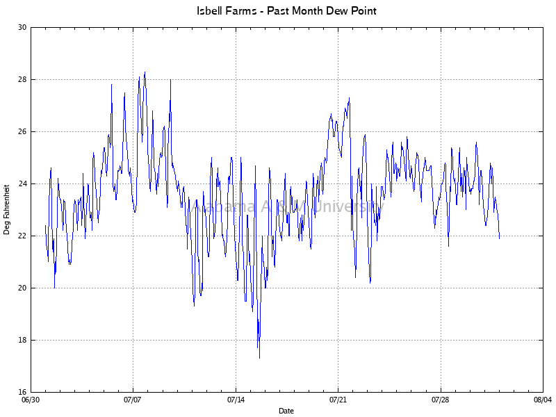 Isbell Farms: Dew Point Past Month