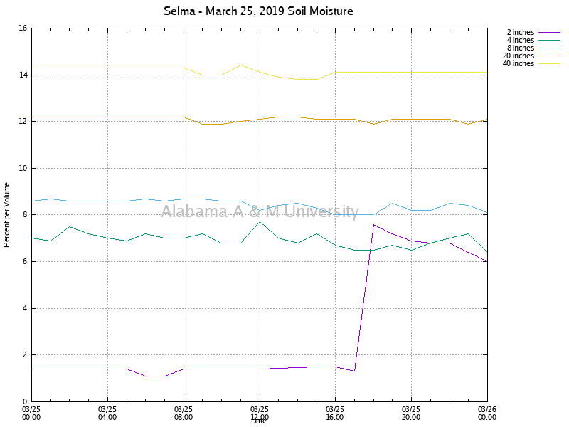 Selma: Soil Moisture March 25, 2019