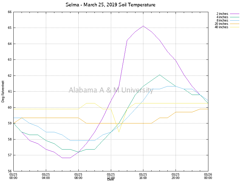 Selma: Soil Temperature March 25, 2019