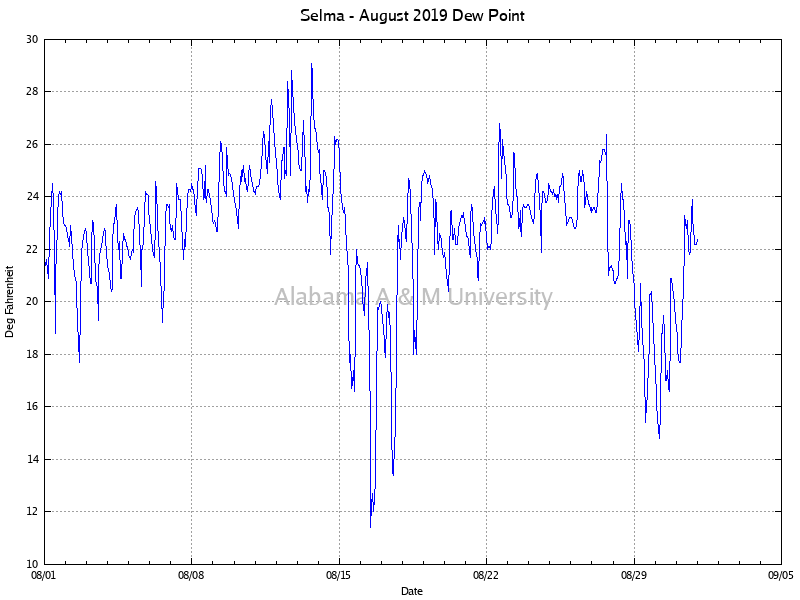 Selma: Dew Point August, 2019
