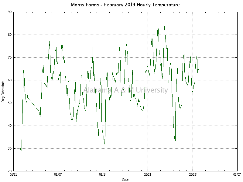 Morris Farms: Hourly Temperature February, 2019