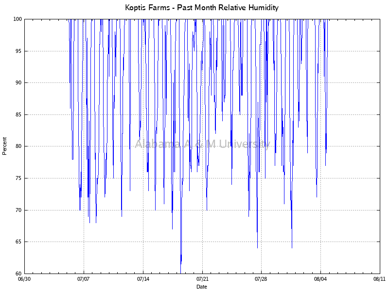 Koptis Farms: Relative Humidity Past Month