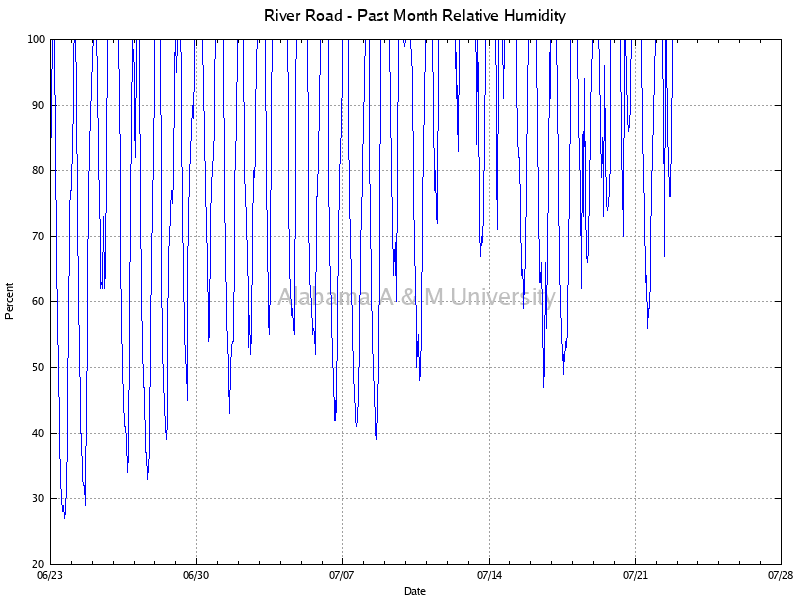 River Road: Relative Humidity Past Month