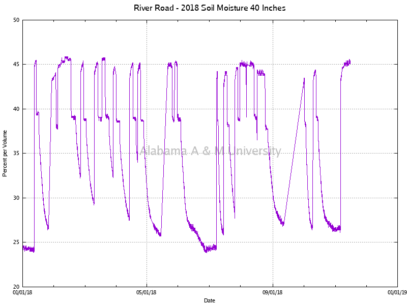 "River Road: Soil Moisture 40"" 2018"
