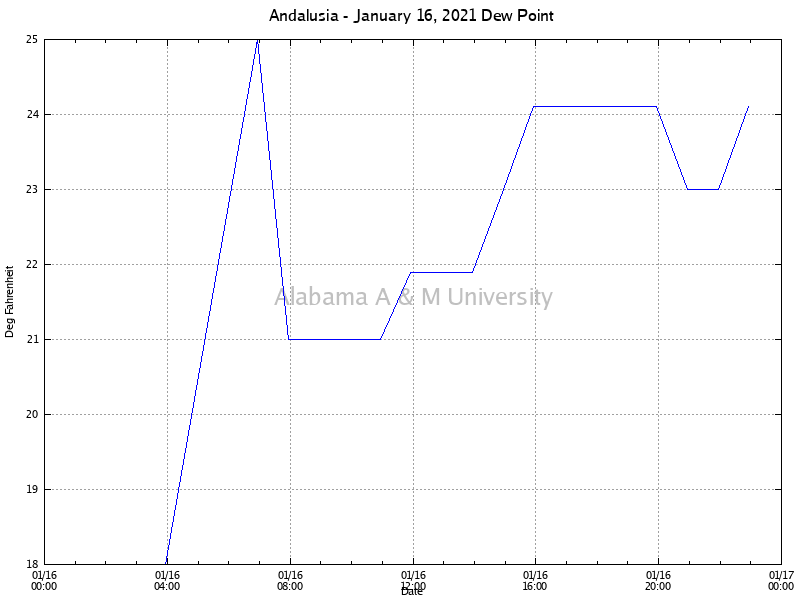 Andalusia: Dew Point January 16, 2021