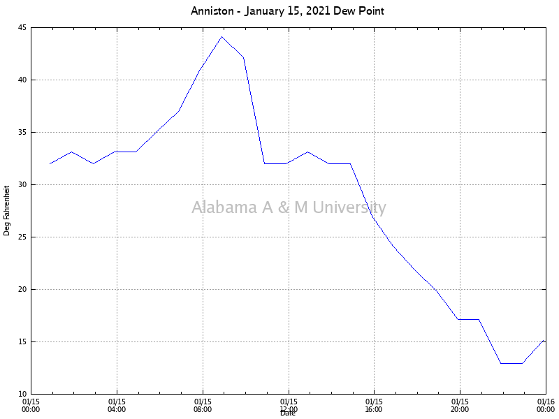 Anniston: Dew Point January 15, 2021