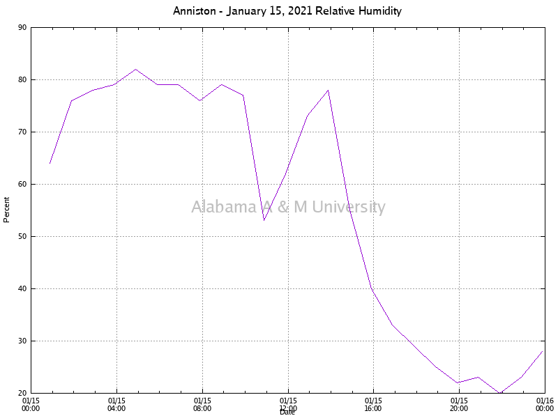 Anniston: Relative Humidity January 15, 2021