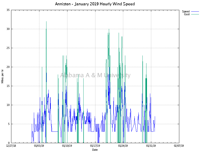 Anniston: Hourly Wind Speed January, 2019
