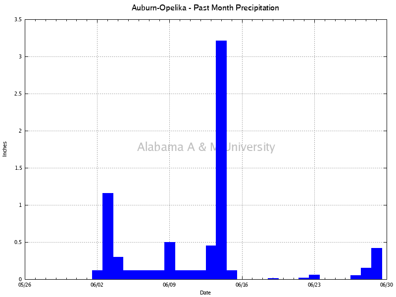 Auburn-Opelika: Precipitation Past Month