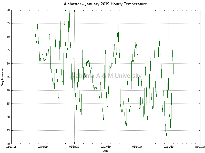 Alabaster: Hourly Temperature January, 2019