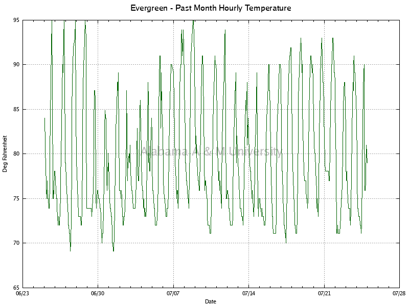 Evergreen: Hourly Temperature Past Month