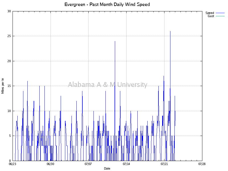 Evergreen: Daily Wind Speed Past Month